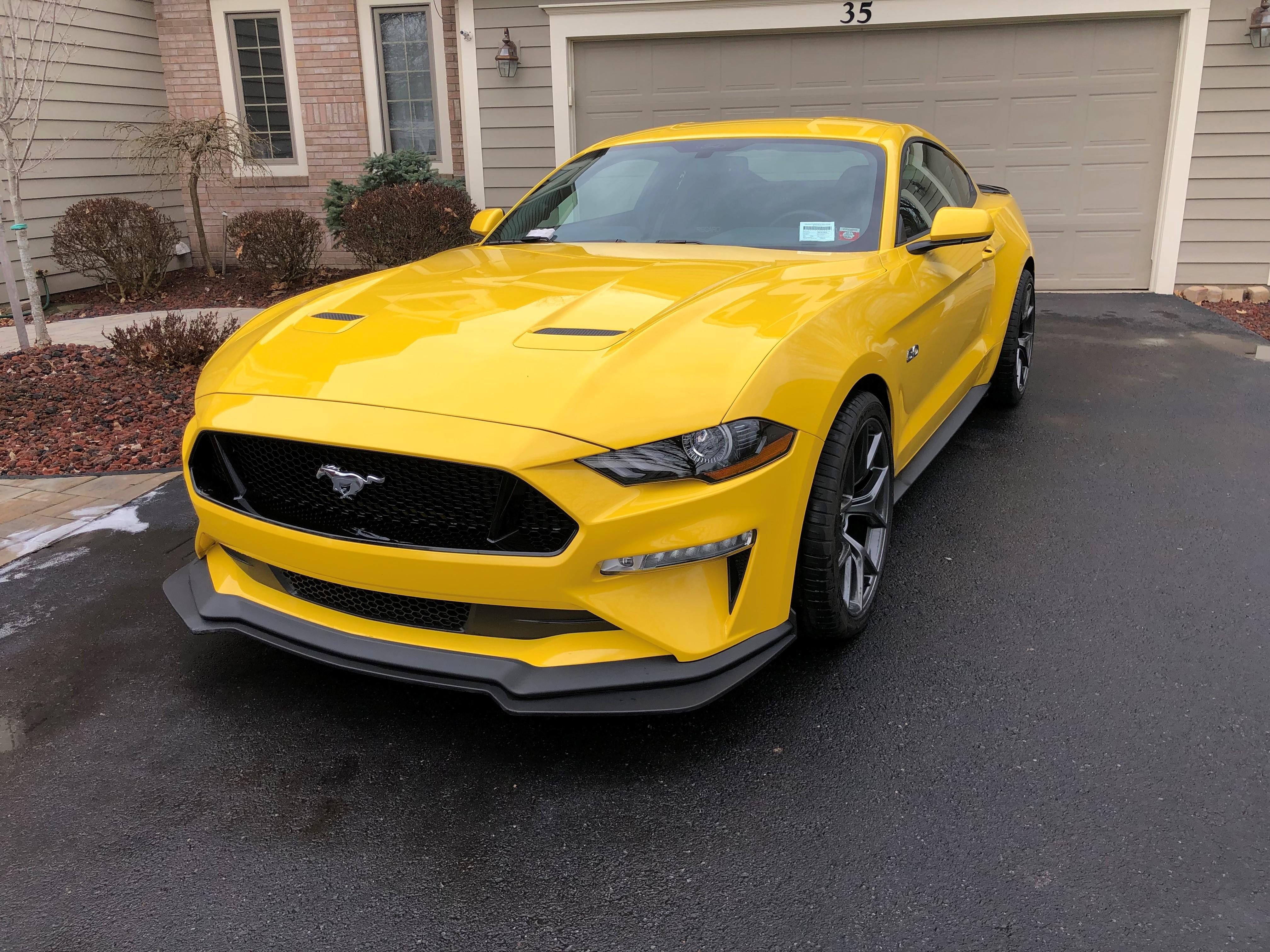 Name:  Mustang.jpg Views: 98 Size:  2.98 MB